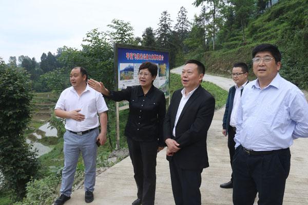罗宁(左二)在钱家乡平安村调研脱贫攻坚.jpg